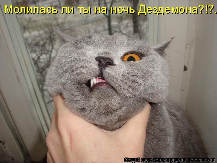 Котоматрица: Молилась ли ты на ночь Дездемона?!?..