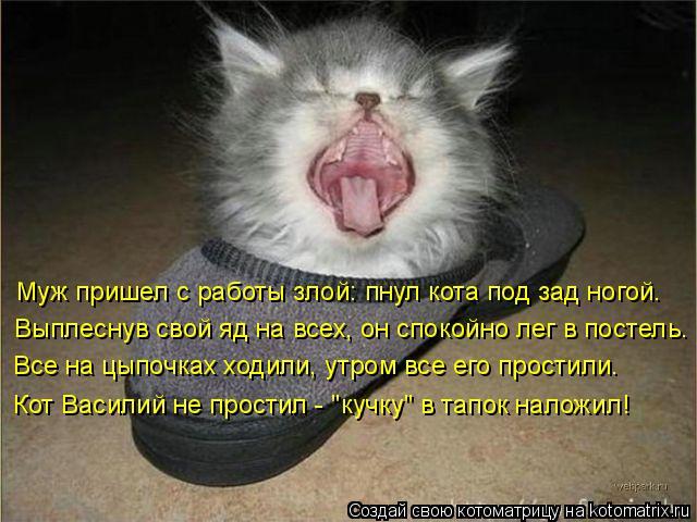 Котоматрица: Муж пришел с работы злой: пнул кота под зад ногой. Выплеснув свой яд на всех, он спокойно лег в постель. Все на цыпочках ходили, утром все его