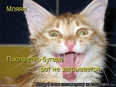 Котоматрица: Мляяя... После того бутера  рот не закрывается...