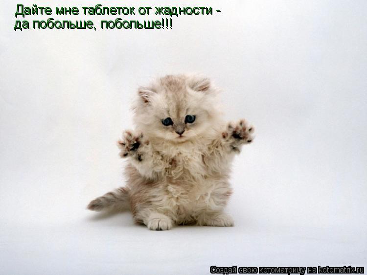 Котоматрица: Дайте мне таблеток от жадности -  да побольше, побольше!!!