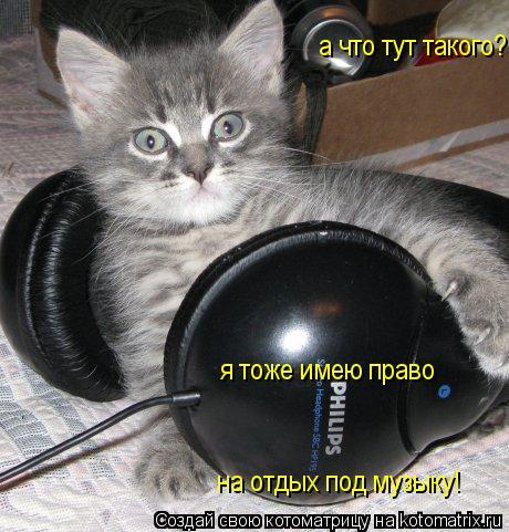 Котоматрица: а что тут такого? я тоже имею право  на отдых под музыку!