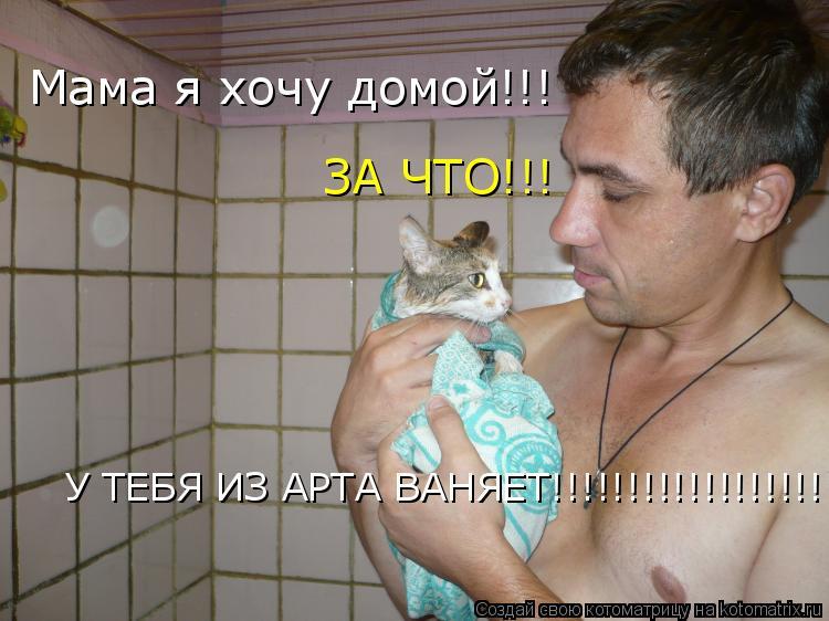 Котоматрица: У ТЕБЯ ИЗ АРТА ВАНЯЕТ!!!!!!!!!!!!!!!!!!!!!!!! Мама я хочу домой!!! ЗА ЧТО!!!