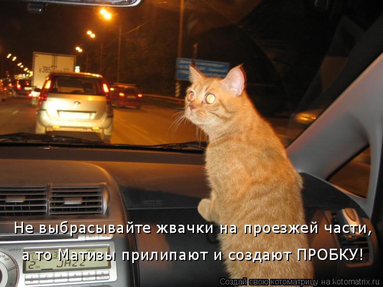 Котоматрица: Не выбрасывайте жвачки на проезжей части,  а то Матизы прилипают и создают ПРОБКУ!