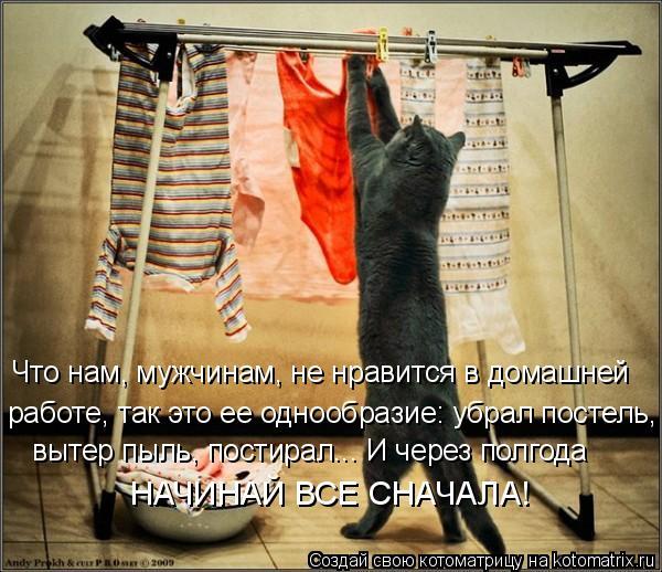 Котоматрица: Что нам, мужчинам, не нравится в домашней  работе, так это ее однообразие: убрал постель,  вытер пыль, постирал... И через полгода  НАЧИНАЙ ВСЕ