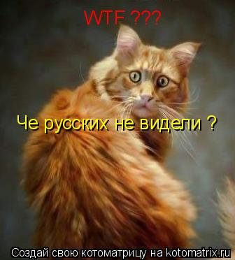 Котоматрица: Че русских не видели ? WTF ???