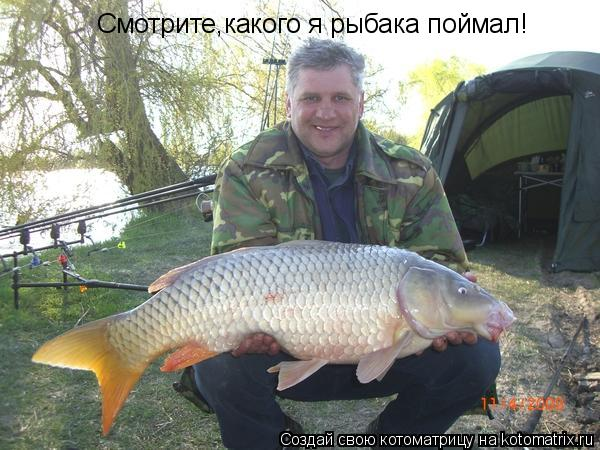 Котоматрица: Смотрите,какого я рыбака поймал!