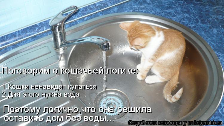 Котоматрица: 1.Кошки ненавидят купаться 2.Для этого нужна вода оставить дом без воды... Поэтому логично,что она решила  Поговорим о кошачьей логике: