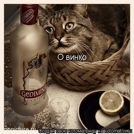Котоматрица: О винко