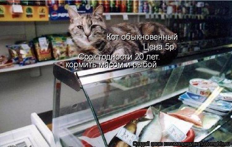 Котоматрица: Кот обыкновенный Цена 5р. Срок годности 20 лет. кормить мясом и рыбой