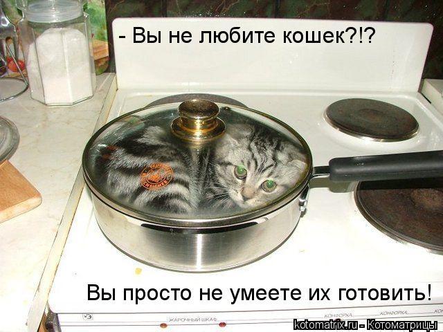 Котоматрица: - Вы не любите кошек?!? Вы просто не умеете их готовить!