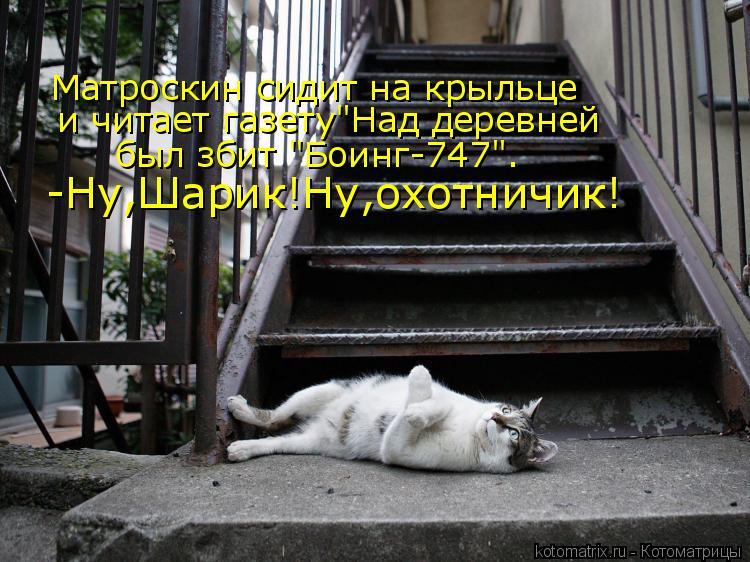 """Котоматрица: Матроскин сидит на крыльце  и читает газету""""Над деревней был збит """"Боинг-747"""". -Ну,Шарик!Ну,охотничик!"""