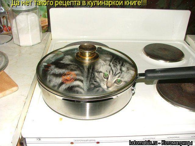 Котоматрица: Да нет такого рецепта в кулинаркой книге!!!