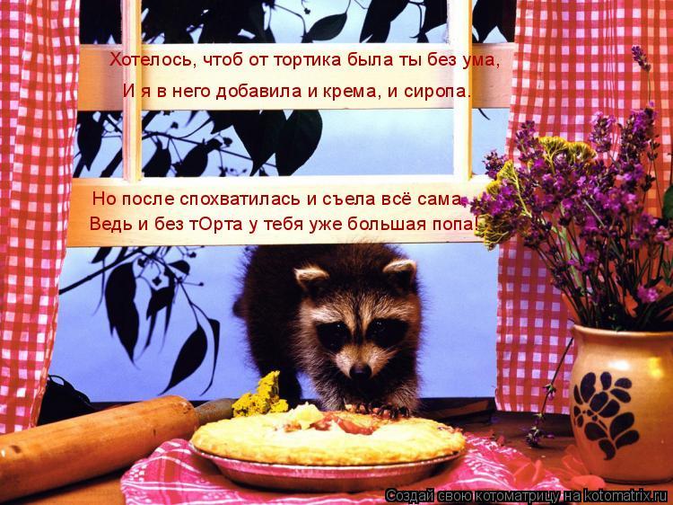 Котоматрица: Хотелось, чтоб от тортика была ты без ума, И я в него добавила и крема, и сиропа. Но после спохватилась и съела всё сама, Ведь и без тОрта у теб