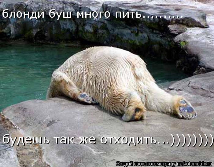 Котоматрица: блонди буш много пить.......... будешь так же отходить...))))))))