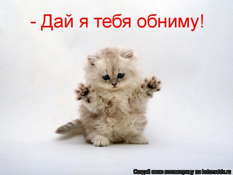 Котоматрица: - Дай я тебя обниму!