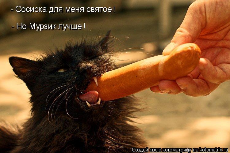 Котоматрица: - Сосиска для меня святое  - Но Мурзик лучше ! !