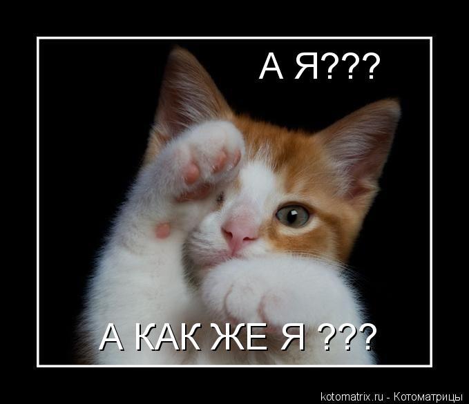 Котоматрица: А Я??? А КАК ЖЕ Я ???