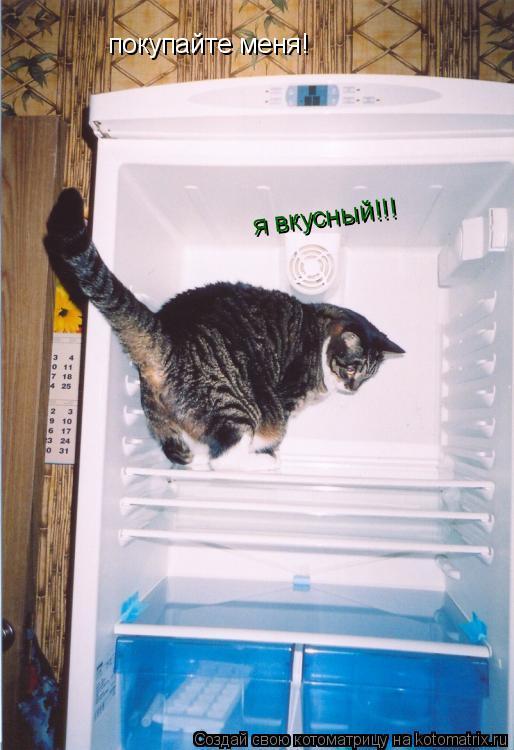 Котоматрица: покупайте меня! я вкусный!!! я вкусный!!!