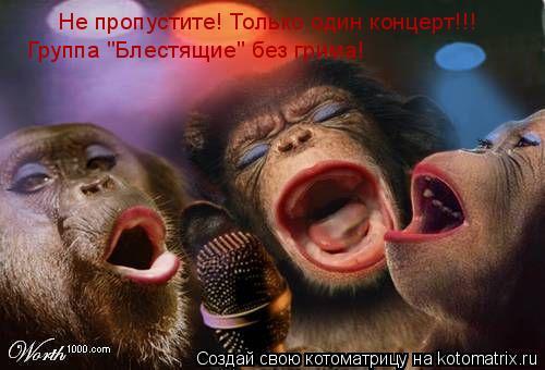 """Котоматрица: Не пропустите! Только один концерт!!! Группа """"Блестящие"""" без грима!"""