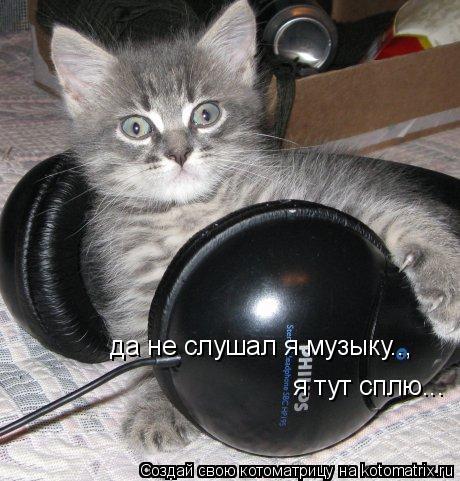 Котоматрица: да не слушал я музыку.., я тут сплю...