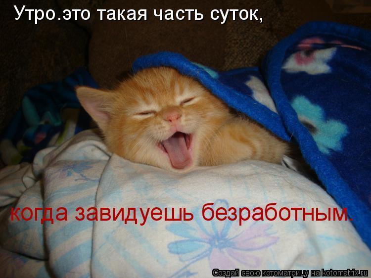 Котоматрица: Утро–это такая часть суток,  когда завидуешь безработным.