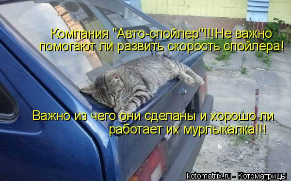 """Котоматрица: Компания """"Авто-спойлер""""!!!Не важно   помогают ли развить скорость спойлера! Важно из чего они сделаны и хорошо ли  работает их мурлыкалка!!!"""