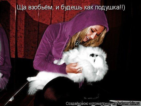 Котоматрица: Ща взобьём, и будешь как подушка!!)