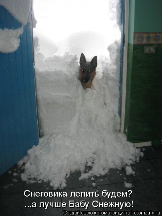 Котоматрица: Снеговика лепить будем? ...а лучше Бабу Снежную!