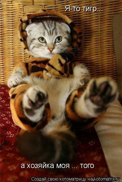 Котоматрица: Я-то тигр... а хозяйка моя ... того