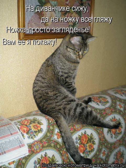 Котоматрица: На диванчике сижу, да на ножку все гляжу Ножка-просто загляденье! Вам ее я покажу!