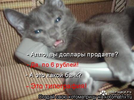 Котоматрица: - Алло, вы доллары продаете? - Да, по 6 рублей! - А это какой банк? - Это типография!