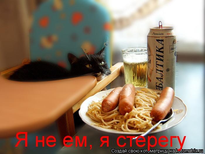 Котоматрица: Я не ем, я стерегу