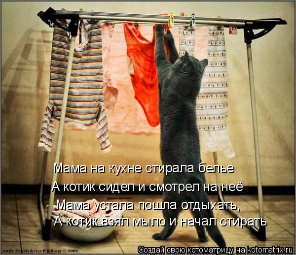 Котоматрица: Мама на кухне стирала белье А котик сидел и смотрел на неё Мама устала пошла отдыхать, А котик взял мыло и начал стирать