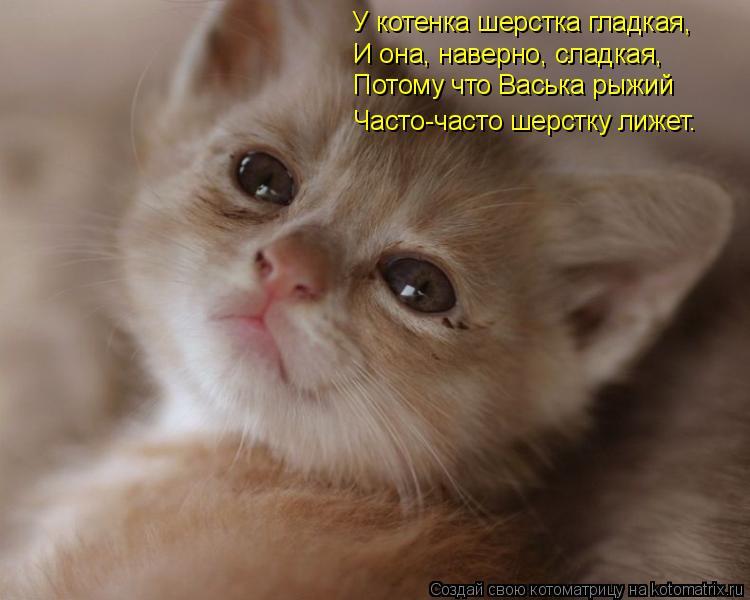 Котоматрица: У котенка шерстка гладкая, И она, наверно, сладкая, Потому что Васька рыжий Часто-часто шерстку лижет.