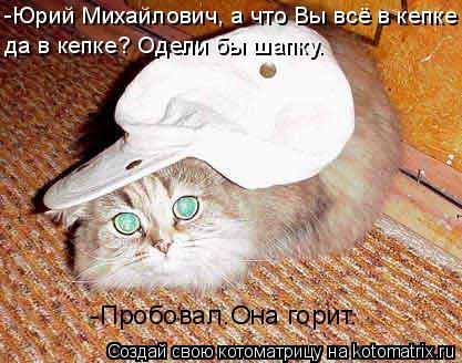 Котоматрица: да в кепке? Одели бы шапку. -Юрий Михайлович, а что Вы всё в кепке  -Пробовал.Она горит.