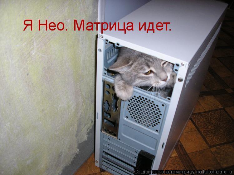 Котоматрица: Я Нео. Матрица идет.