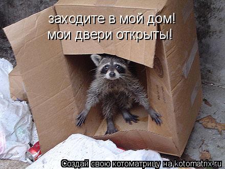 Котоматрица: заходите в мой дом!  мои двери открыты!