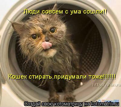 Котоматрица: Люди совсем с ума сошли!! Кошек стирать,придумали тоже!!!!!!