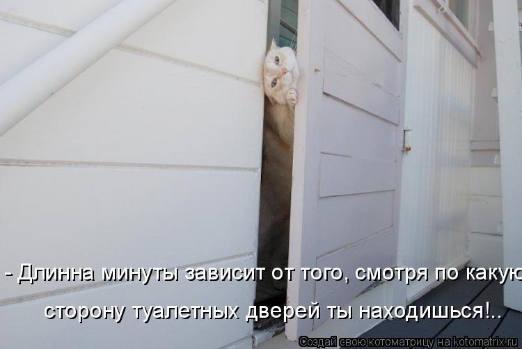 Котоматрица: - Длинна минуты зависит от того, смотря по какую  сторону туалетных дверей ты находишься!..