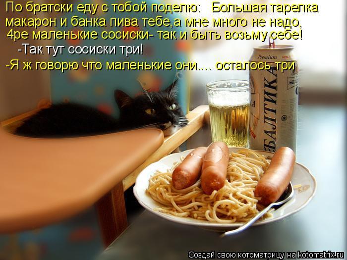 Котоматрица: По братски еду с тобой поделю:   Большая тарелка макарон и банка пива тебе,а мне много не надо,  4ре маленькие сосиски- так и быть возьму себе!