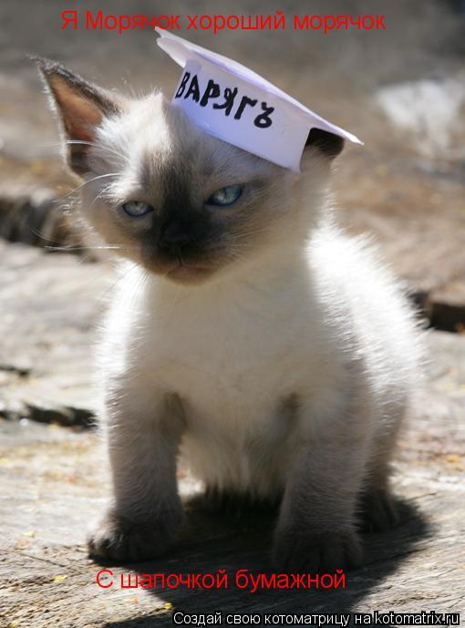 Котоматрица: Я Морячок хороший морячок С шапочкой бумажной