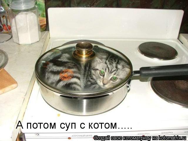 Котоматрица: А потом суп с котом.....