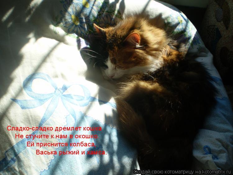 Котоматрица: Сладко-сладко дремлет кошка Не стучите к нам в окошко. Ей приснится колбаса, Васька рыжий и хамса.