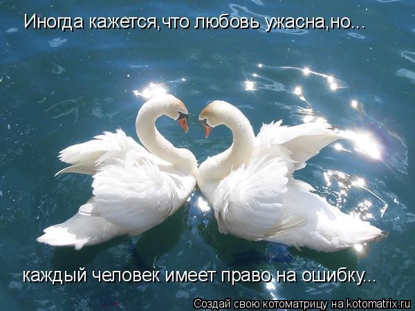 Котоматрица: Иногда кажется,что любовь ужасна,но... каждый человек имеет право на ошибку...