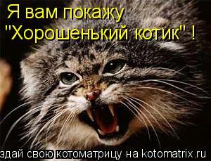 """Котоматрица: Я вам покажу """"Хорошенький котик"""" !"""