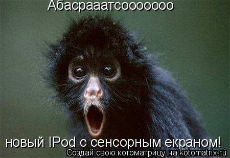 Котоматрица: Абасрааатсооооооо новый IPod с сенсорным екраном!