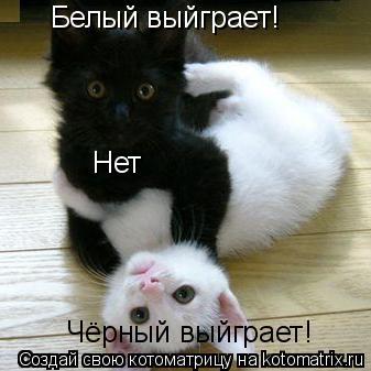 Котоматрица: Белый выйграет! Нет Чёрный выйграет!