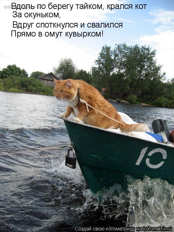 Котоматрица: Вдоль по берегу тайком, крался кот   За окуньком,   Вдруг споткнулся и свалился Прямо в омут кувырком!