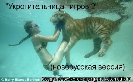 """Котоматрица: """"Укротительница тигров 2"""" (новорусская версия)"""