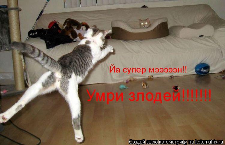 Котоматрица: Йа супер мэээээн!! Умри злодей!!!!!!!